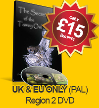 The Secret Life of the Tawny Owl - DVD (UK & EUR PAL - Region 2)