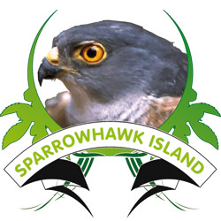Sparrowhawk Island - Real Sparrowhawks and other british birds and wildlife captured in their habitat live on web cam - Sparrowhawk Island - The UK's Number 1 website for Sparrowhawks in the wild.